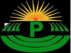 logo pegrucci